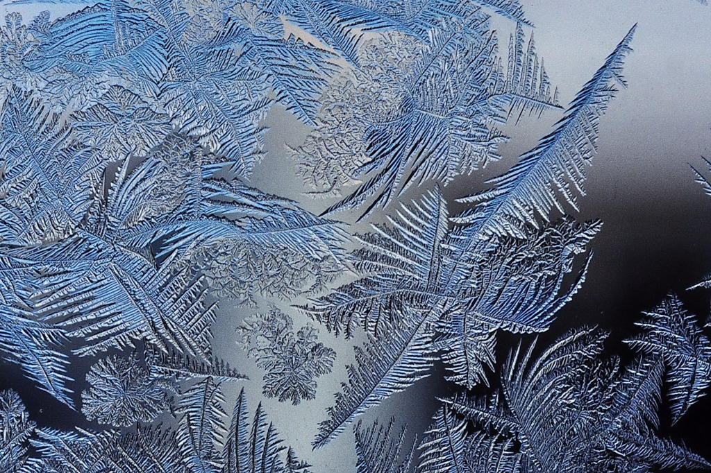 Frost Pattern Fractal: notice the repetition on pattern. Photo courtesy of Wikipedia