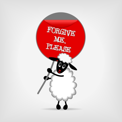 sheep holding forgive me sign